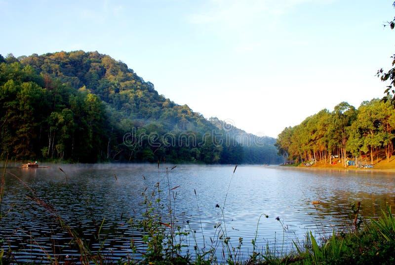 Abetaia verde con il campeggio del turista vicino al lago con nebbia sopra l'acqua di mattina, nort della provincia di Maehongson immagine stock libera da diritti