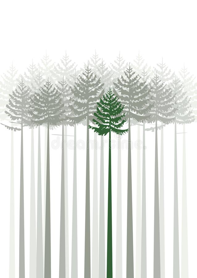 Abeto da floresta ilustração do vetor