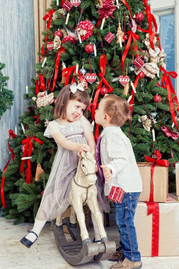 Abeto de la Navidad imagen de archivo libre de regalías