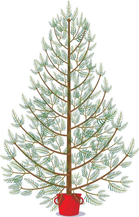 Abeto en el pote que espera para ser adornado para la Navidad ilustración del vector