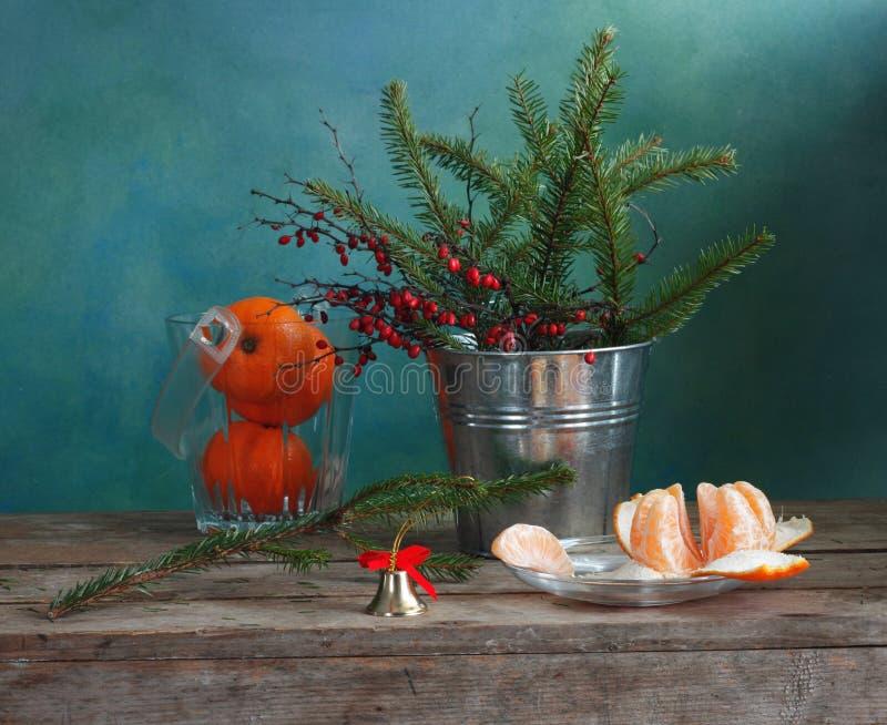Abeto-galho e mandarino fotos de stock royalty free