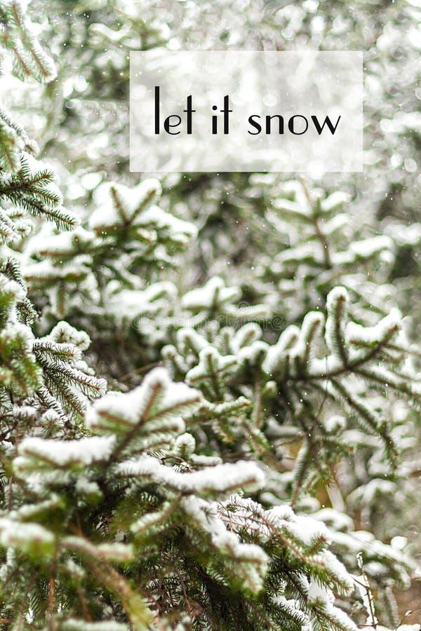 Abeto verde derramado densamente con nieve, y con la inscripción imagen de archivo libre de regalías
