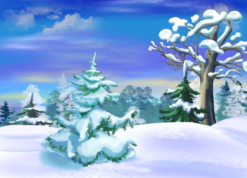 Abeto vermelho coberto de neve em um inverno Forest Clearing ilustração royalty free