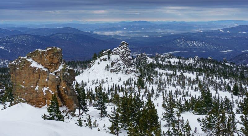 Abetos vermelhos e penhascos nas montanhas Siberian fotografia de stock royalty free