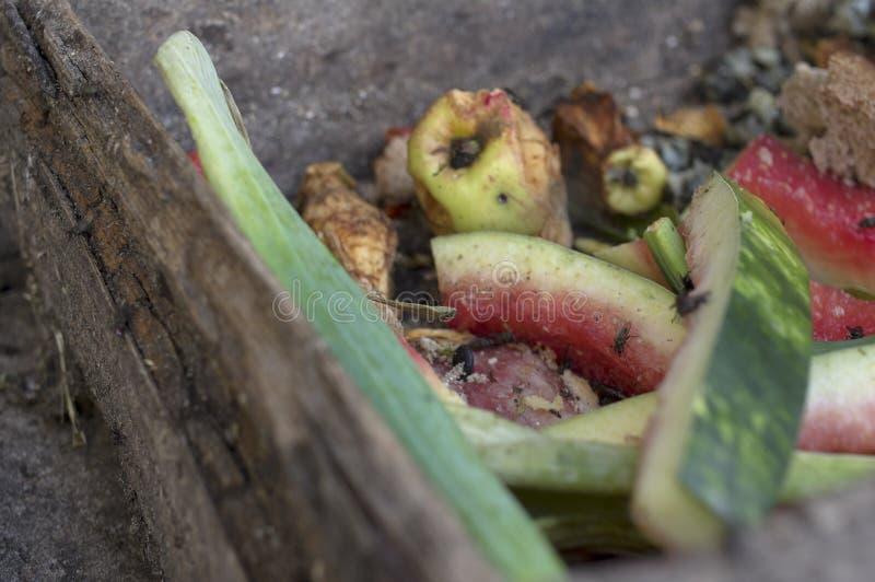 Abfall des biologischen Lebensmittels lizenzfreies stockbild