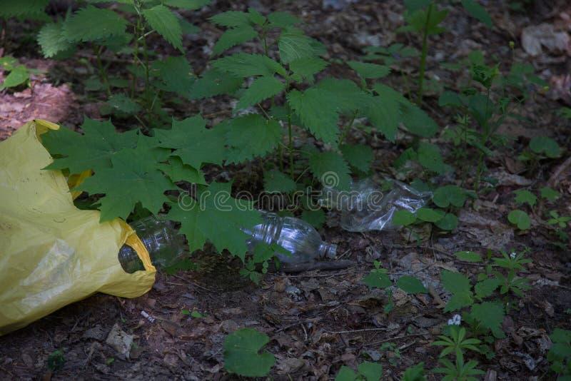 Abfallspeicherauszug im Wald lizenzfreie stockbilder