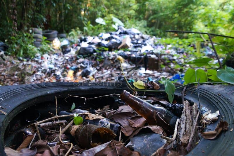 Abfallstapel im Dschungel lizenzfreies stockbild