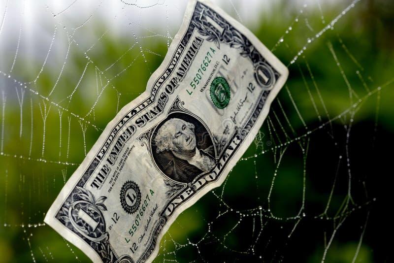Abgefangen in einem Finanzweb lizenzfreie stockbilder