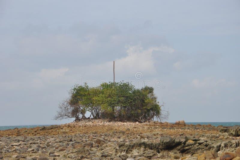 Abgefressene Insel während der Ebbe stockfotos