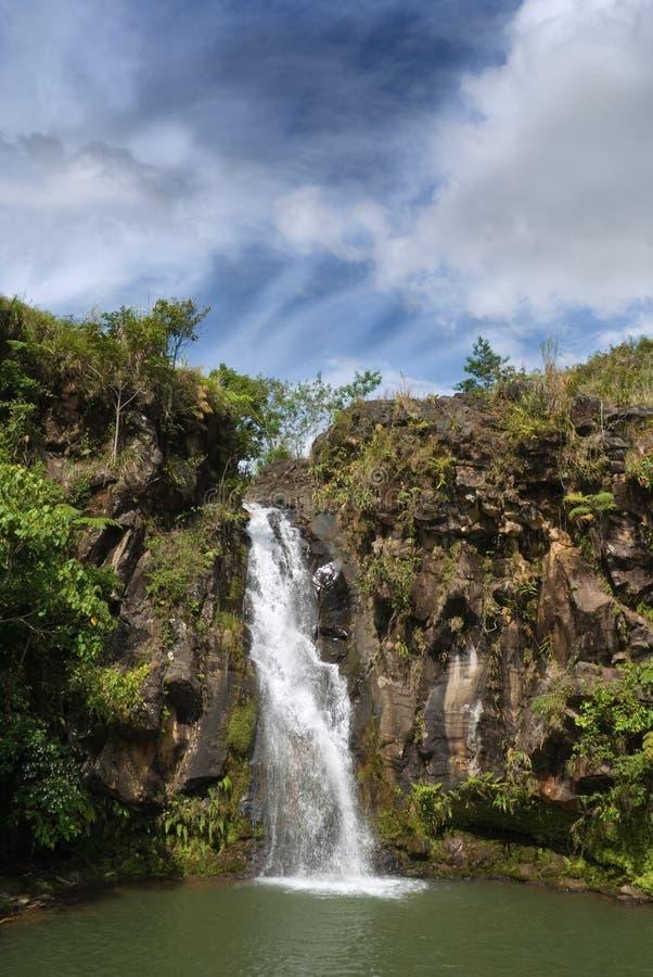 Abgelegener Dschungelwasserfall lizenzfreie stockfotografie
