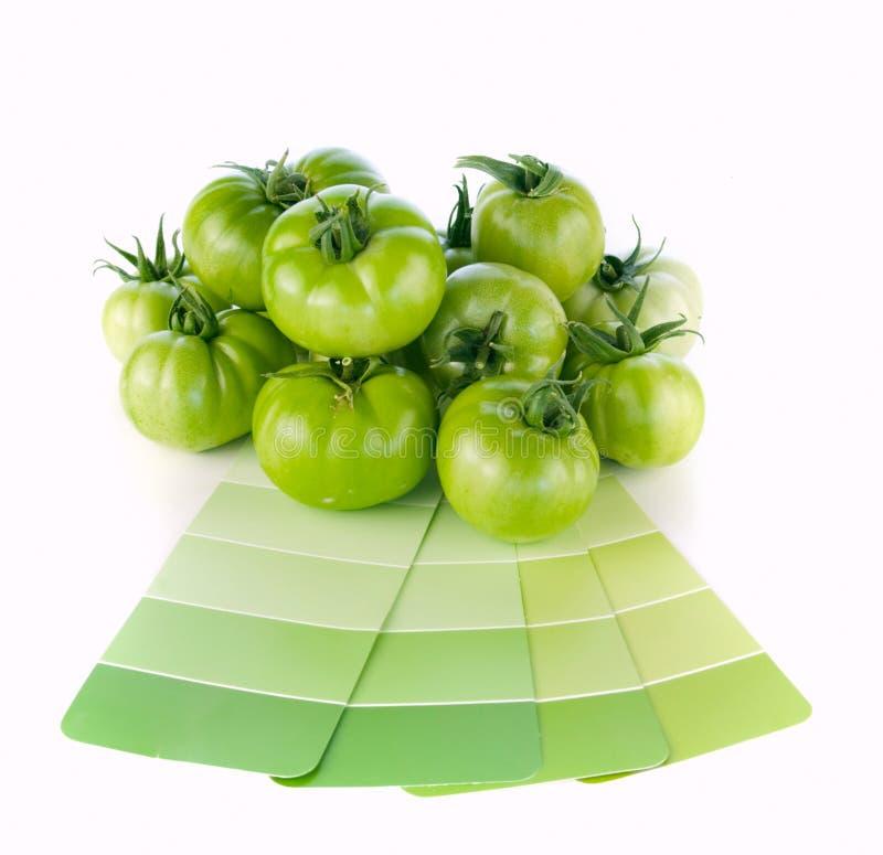 Abgleichende grüne Lackfarben zur Natur stockfotos