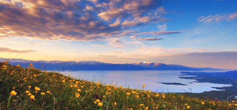 abisko park narodowy zdjęcie stock
