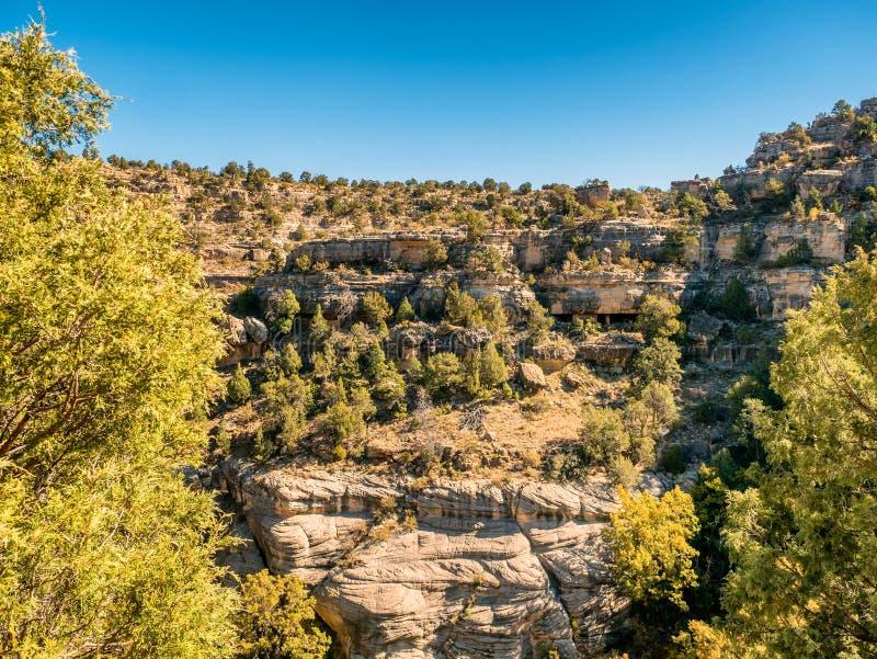 Abitazioni nel monumento nazionale del canyon della noce vicino all'albero per bandiera, immagine stock libera da diritti