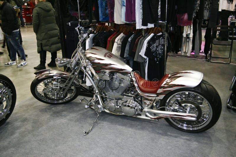 Abitudine di gray dello sportster 883 del motociclo immagini stock libere da diritti