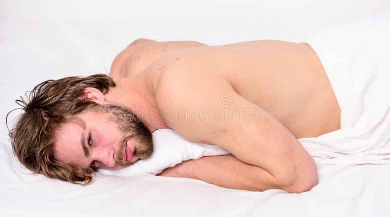 Abitudini sane di sonno E Tempo per pelo Dorma e rilassi il concetto Ritenga comodo e immagini stock
