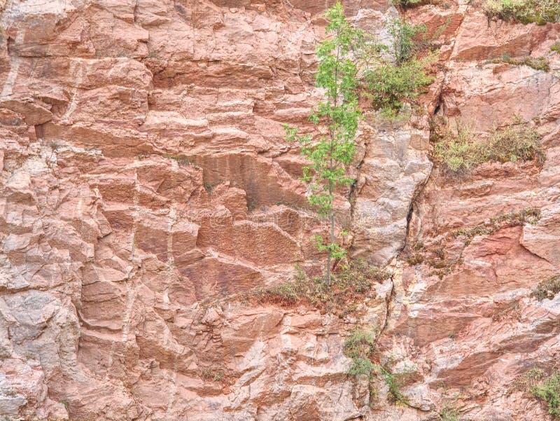 Ablegrujący wapno i feric linie w ściany powierzchni kopalnia zdjęcia royalty free
