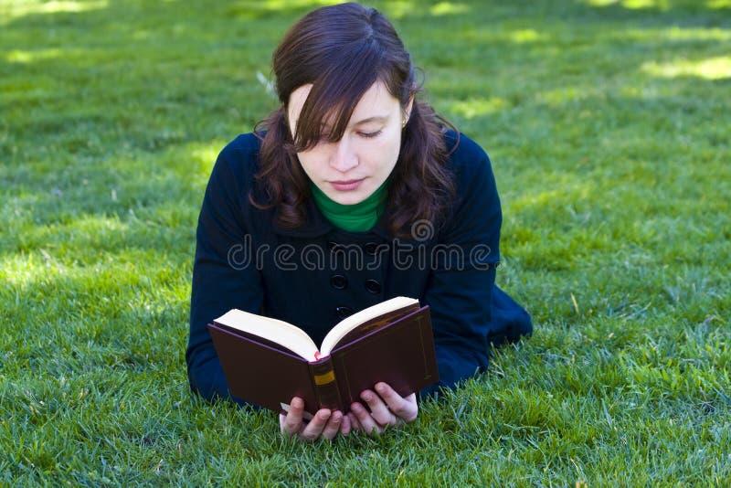 Ablesen auf dem Gras stockbild