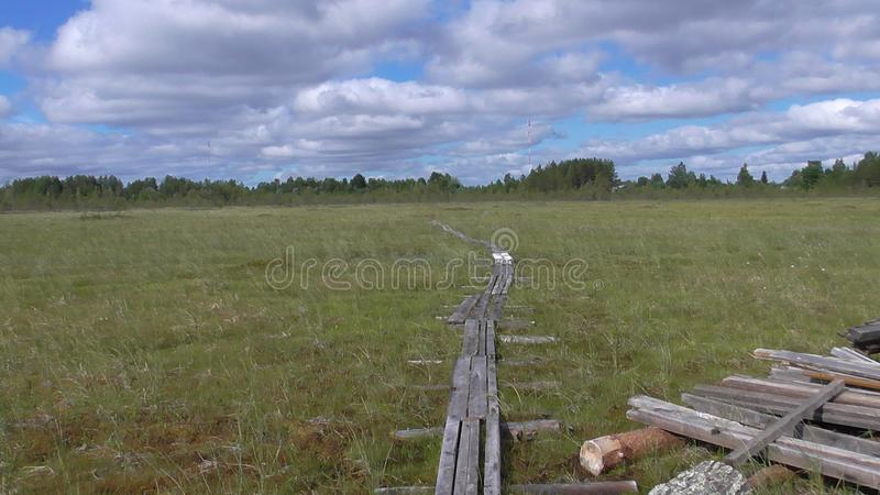 Karelia swamp. Abnormal mountain in Karelia, ugly trees, mystical landscapes. There are more than one and a half thousand stone sades. The sinister secret of the stock photos