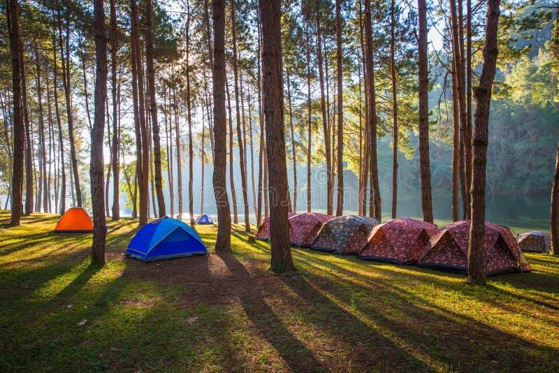 Abobade barracas ao lado do lago na névoa no nascer do sol fotos de stock