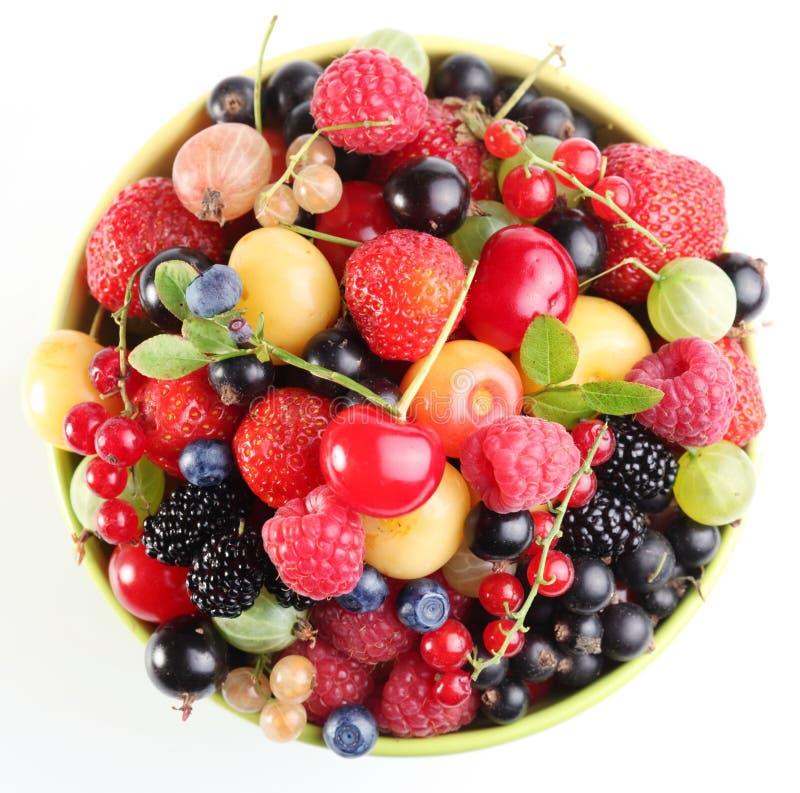 Abondance de fruit image libre de droits