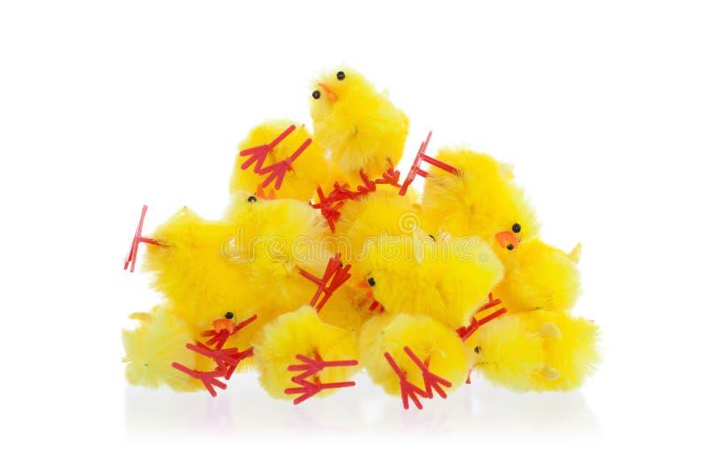Abondance de poussins de Pâques, foyer sélectif image stock