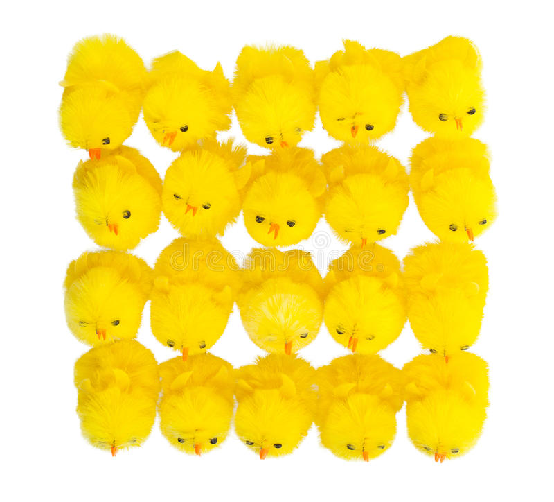 Abondance de poussins de Pâques, vue supérieure photos stock