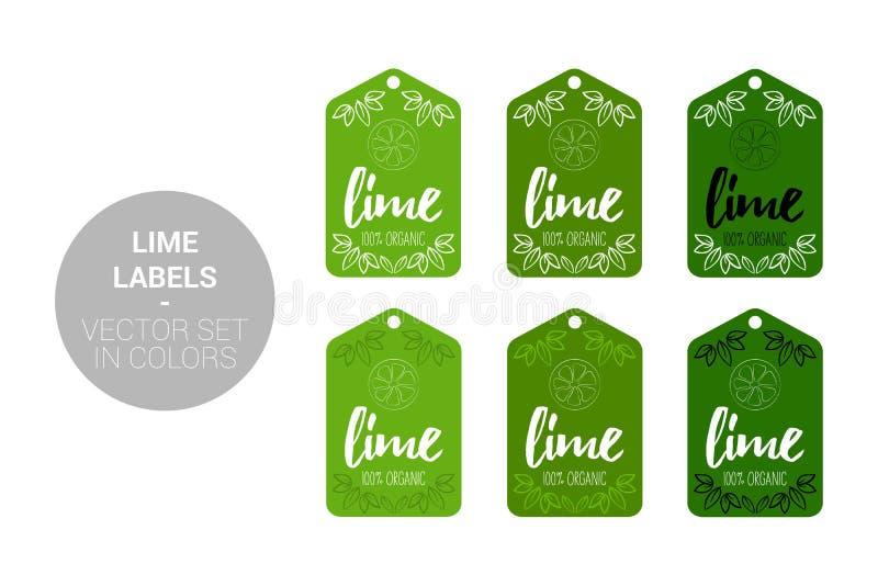 Abone el sistema del vector con cal de las etiquetas de Eco de la fruta en colores verdes, verde oscuro ilustración del vector
