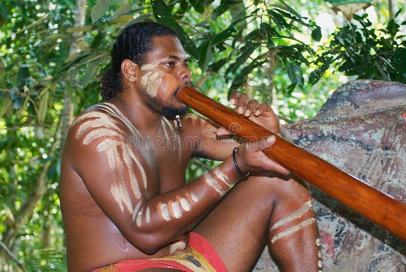 Aboriginerskådespelaren utför musik med det traditionella didgeridoomusikinstrumentet i Tjapukaien som kultur parkerar i Kuranda, royaltyfria foton