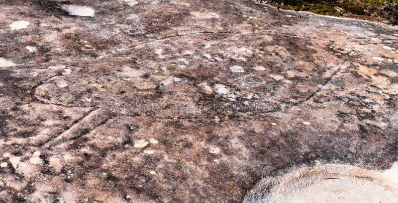 Aborygenu rockowy cyzelowanie w Królewskim parku narodowym w Sydney obrazy stock