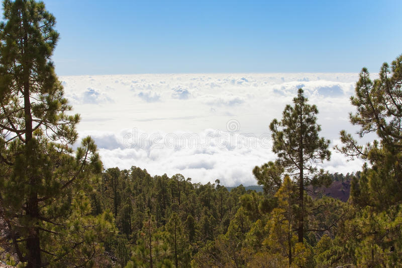 Download Above The Clouds Stock Photography - Image: 12463672