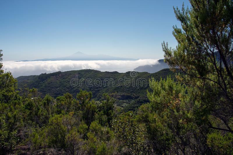 Above the clouds at La Gomera, Canary Islands. With Teide in the distance stock photos