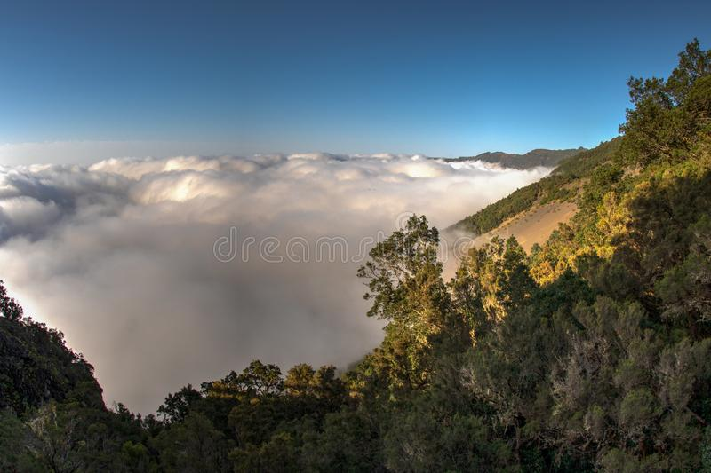 Above the clouds, like from an airplane. Amazing view of the wooded slopes of the northwest of the island of El Hierro. Warm cozy. Evening in the mountains royalty free stock photo