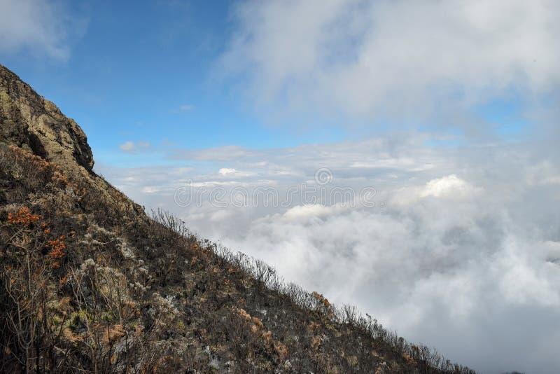 Above the clouds at Mount Meru, Tanzania. Above the clouds at Mount Meru, Arusha National Park, Tanzania stock photos