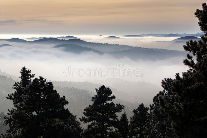 Above the Fog stock image