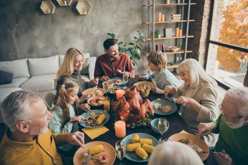 Above high angle view portrait of nice cheerful big full family couples brother sister eating enjoying season domestic royalty free stock image