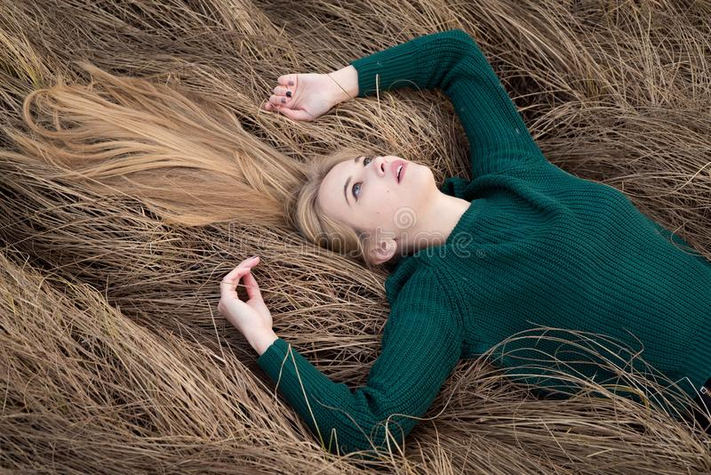 Above view of beautiful redhaired girl lying on grass, posing, embracing. Autumn forest with yellow grass. Woman with long hair, stock photography
