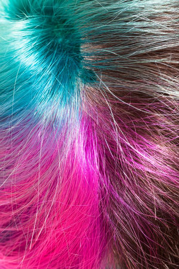 Above view of parting of multicolored dyed hairs royalty free stock photo