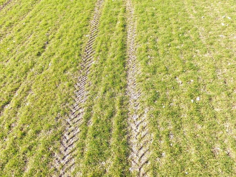 Aerial view of tractor tracks in a crop field. stock photo