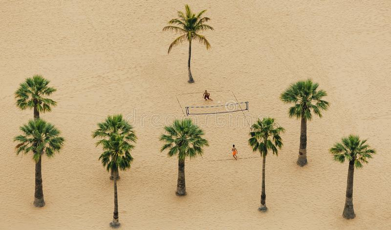Above view on two boys who is playing on volleyball between palm trees on Teresitas beach. royalty free stock image