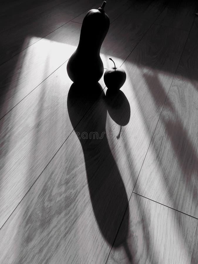 Abrégé sur noir et blanc la vie de distillateur de courge et de pomme image libre de droits