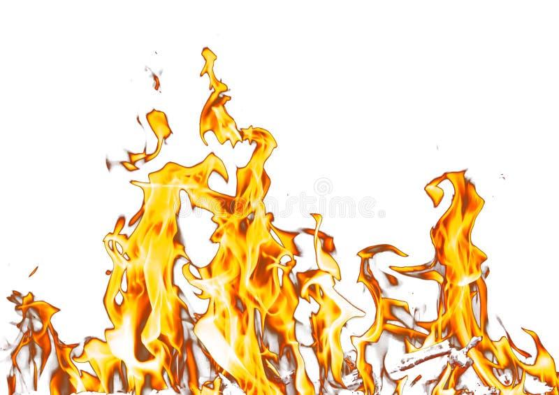 abrégez le fond le feu de flamme sur un fond blanc photo stock