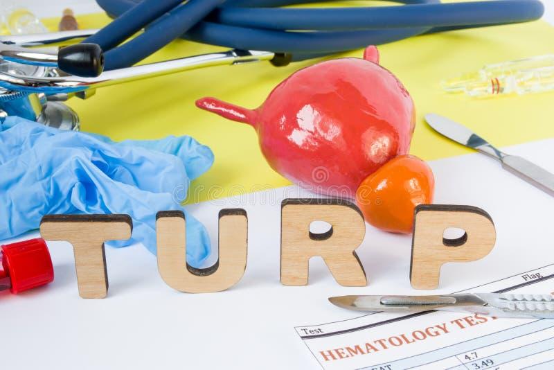 Abréviation d'urologie de chirurgie de TURP ou acronyme médicale de la résection transurethral de la prostate, opération chirurgi photographie stock