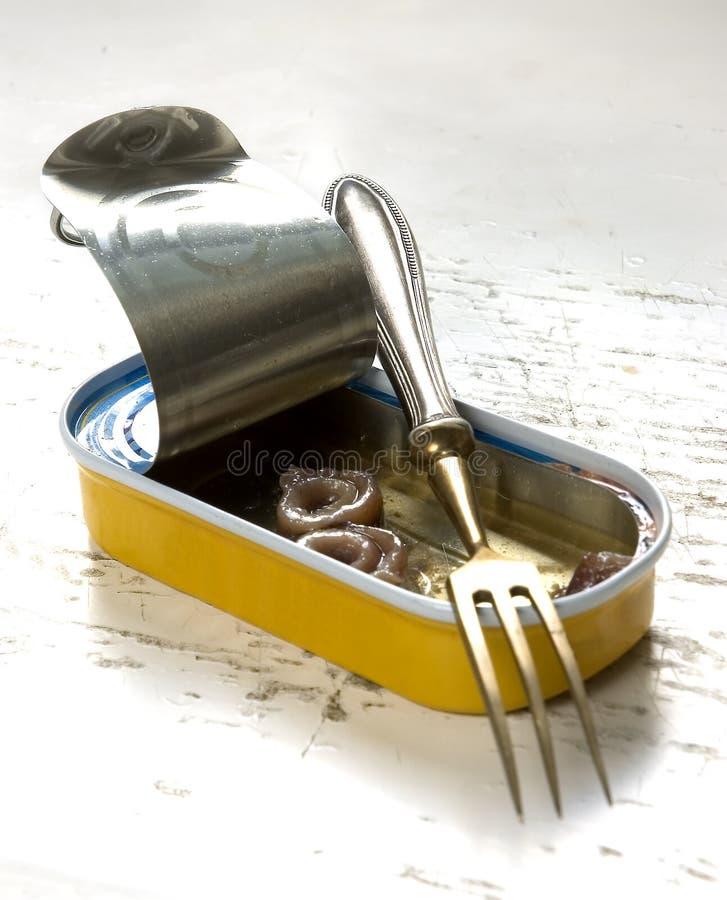 Abra a anchova imagem de stock