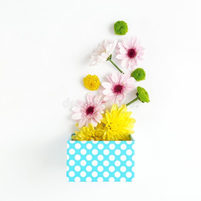 Abra a caixa de presente azul com os crisântemos diferentes no backgr branco fotos de stock