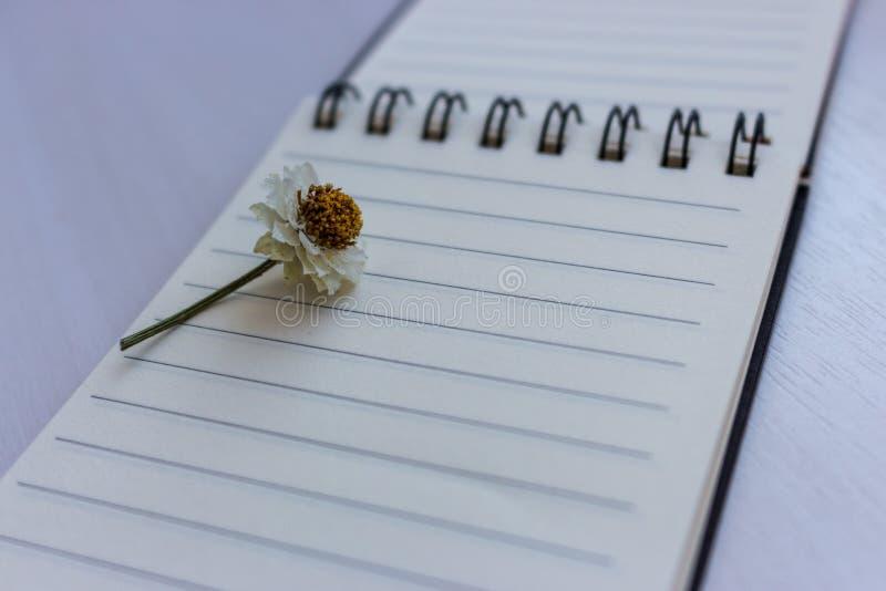 Abra el cuaderno con las páginas vacías y la pequeña flor de la manzanilla en ella Fondo de la escritura Libro del diario y del o imágenes de archivo libres de regalías