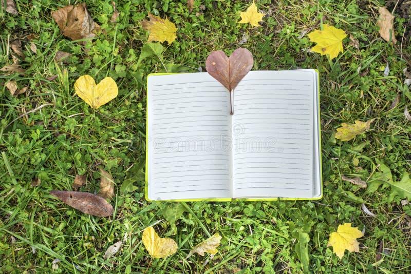 Abra el libro en un fondo de la hierba verde con las hojas de otoño fotos de archivo libres de regalías
