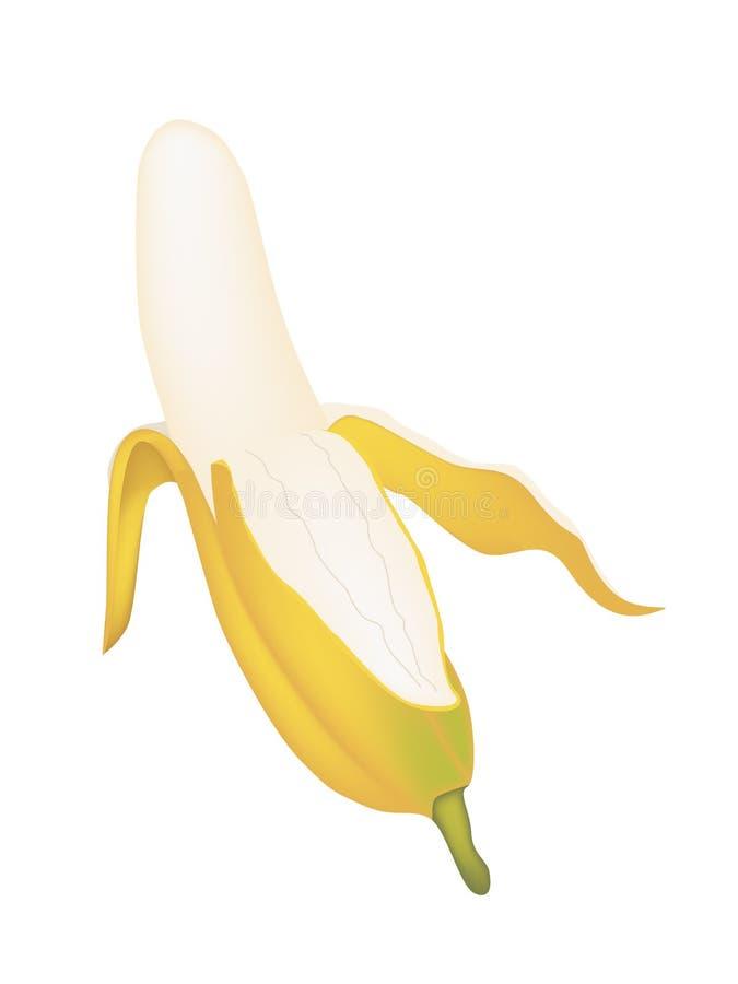 Abra el plátano asiático maduro en el fondo blanco ilustración del vector