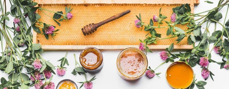 Abra frascos do mel com dipper, quadro do favo de mel e as flores selvagens no fundo branco, vista superior imagens de stock royalty free