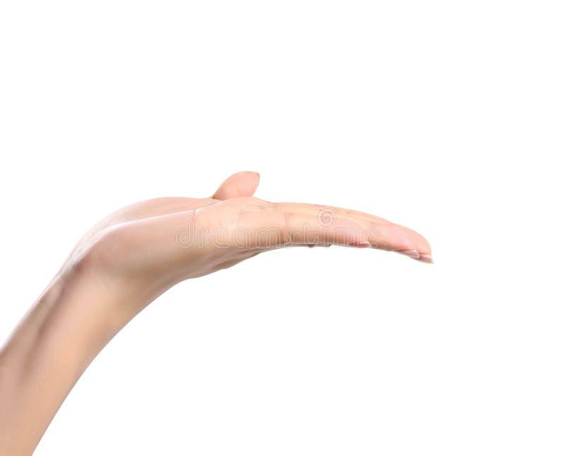 Abra la mano de la mujer imagen de archivo libre de regalías