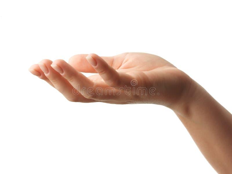 Abra la mano de la mujer en el fondo blanco foto de archivo libre de regalías